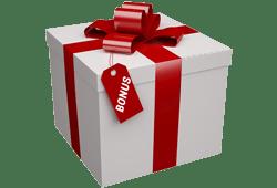 cadeau emballé avec inscription Bonus