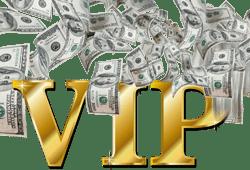 Programme VIP